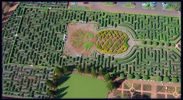 Uma das principais atrações do lugar é o Pineaple Garden Maze. O labirinto botânico foi considerado o maior do mundo em 2008 com uma área de aproximadamente três acres (12 mil metros quadrados) contendo mais de 14 mil plantas havaianas. Foto retirada do site da Dole Plantation.