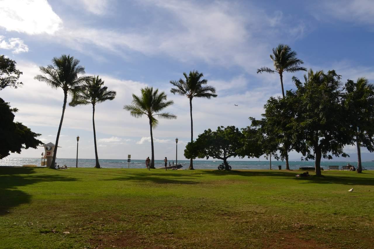 Gramado enorme na beira-mar de Waikiki. Aqui as pessoas aproveitam o espaço para jogar frisbee, fazer atividades físicas ou relaxar.
