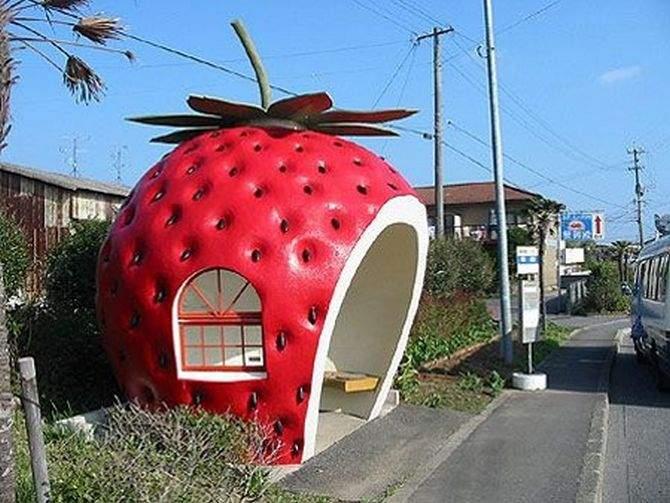 Foto: entediabo.com.br