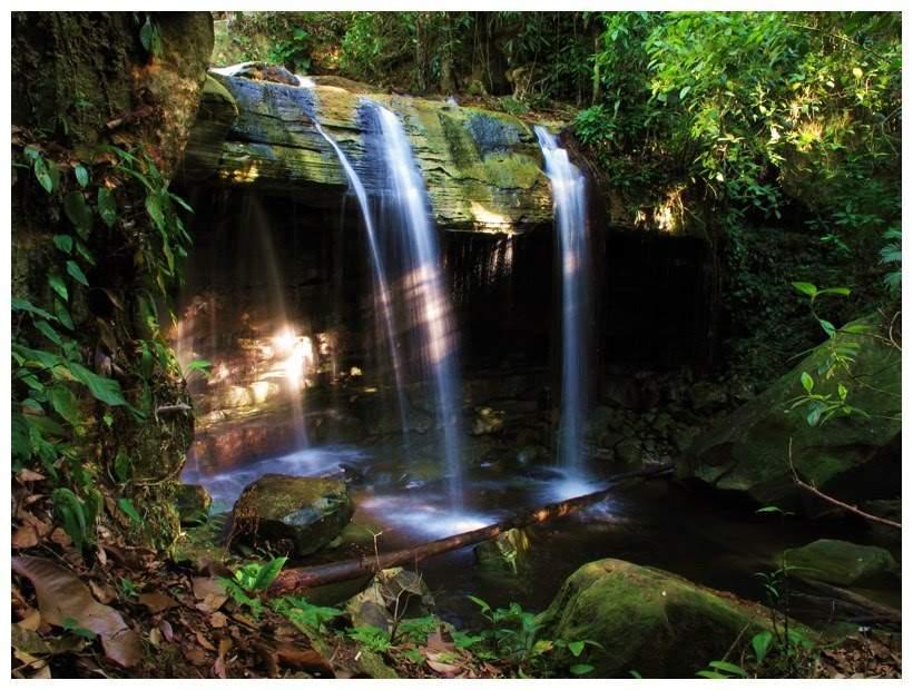 Presidente Figueiredo 2 - Cachoeira da Sussuarana 2 - Junglenews