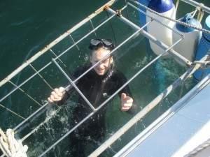Luke na gaiola para ver os tubaroes!