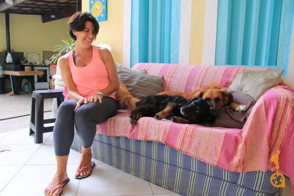 cachorros no sofá do airbnb