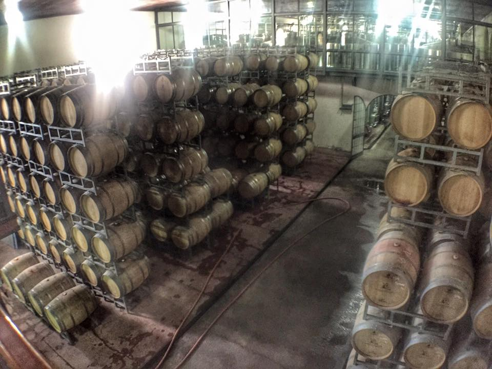 Vinícolas em Mendoza 18
