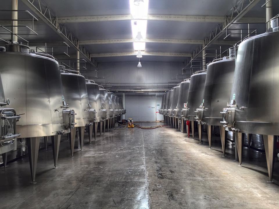 Vinícolas em Mendoza 3