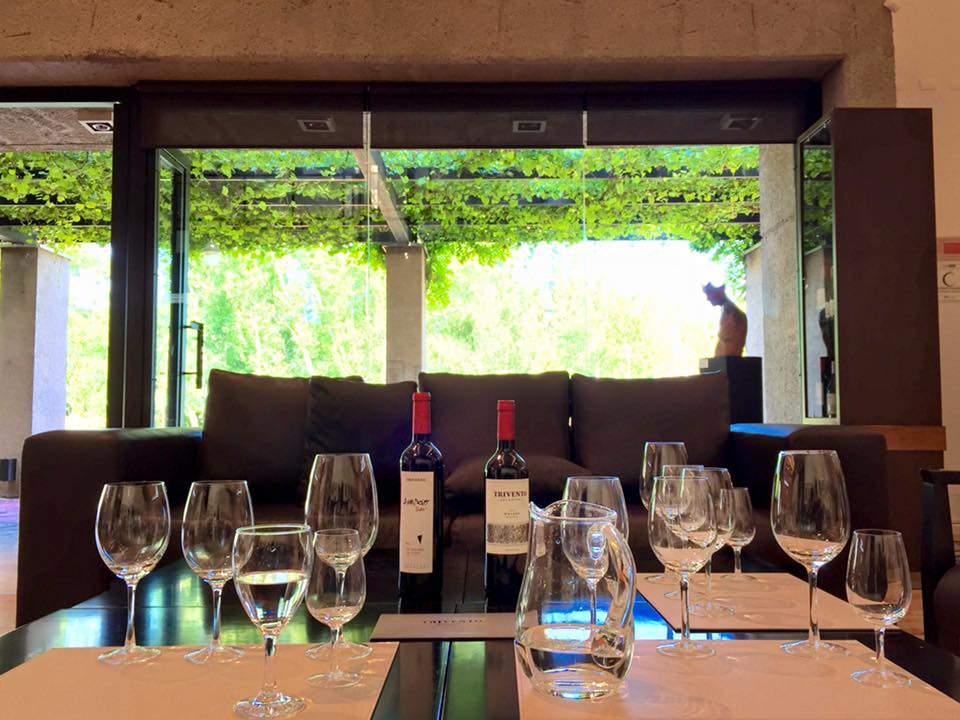 Vinícolas em Mendoza 6