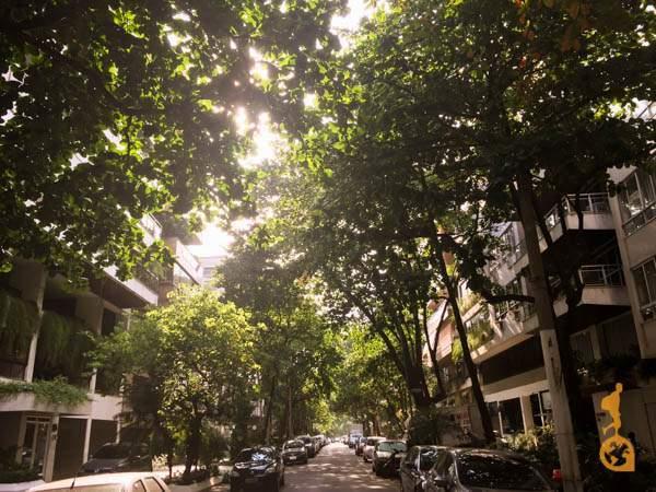 """A """"caje"""" quer dizer, a rua do hostel, com árvores frondosas escondendo os prédios residenciais."""