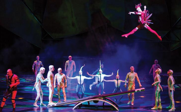 Show em las vegas - cirque du soleil mistere