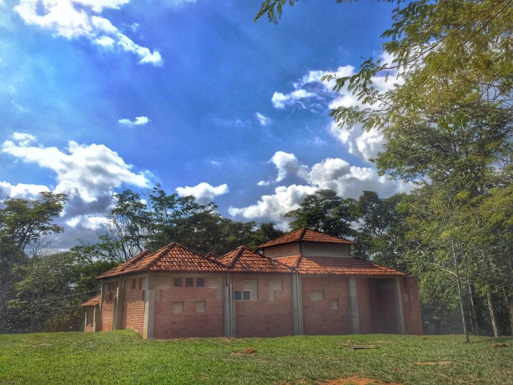 Parque Estadual do Rio Doce - O que fazer e como chegar? 11