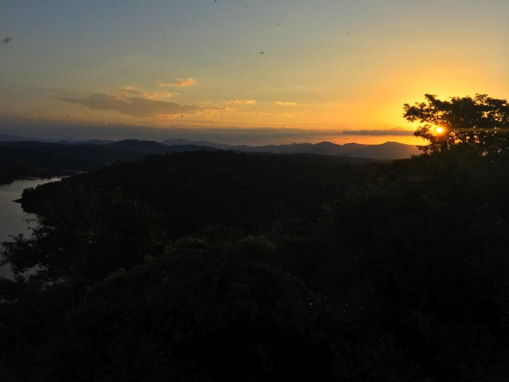 Parque Estadual do Rio Doce - O que fazer e como chegar? 15