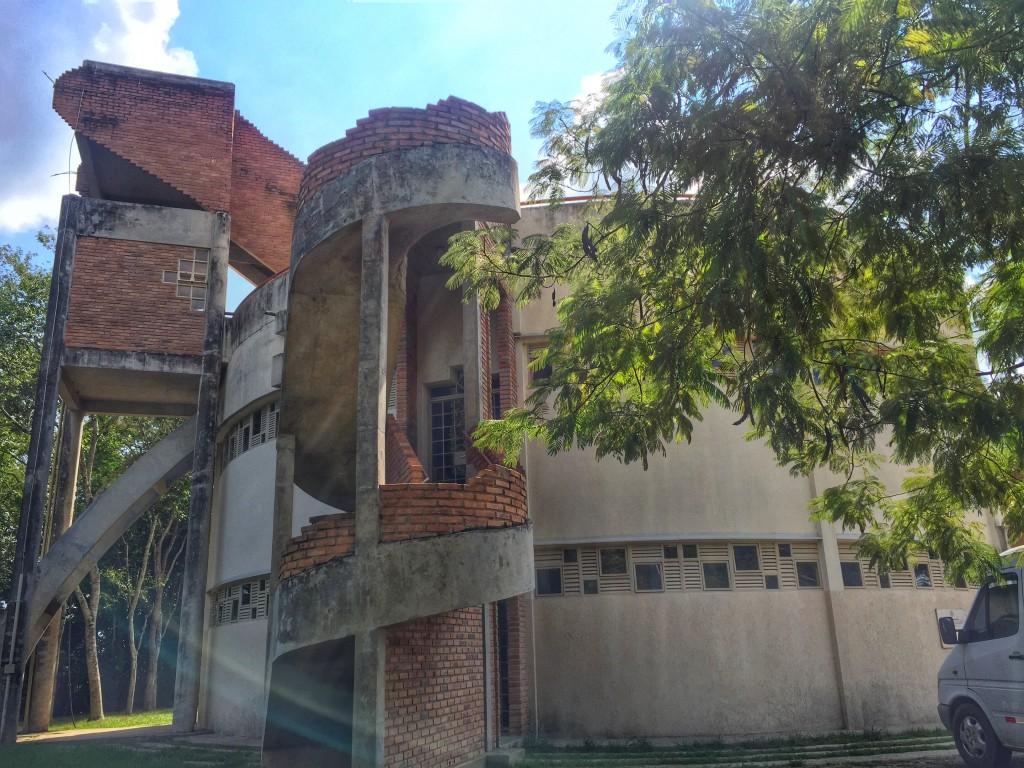 Parque Estadual do Rio Doce - O que fazer e como chegar? 16