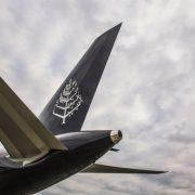 Private Jet Four Seasons