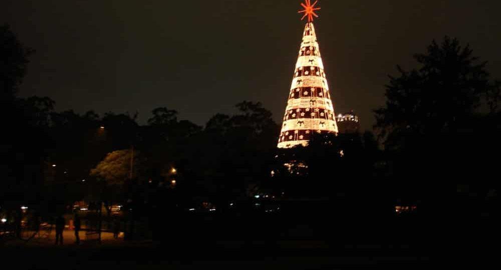 Árvore de natal do Parque Ibirapuera, em São Paulo