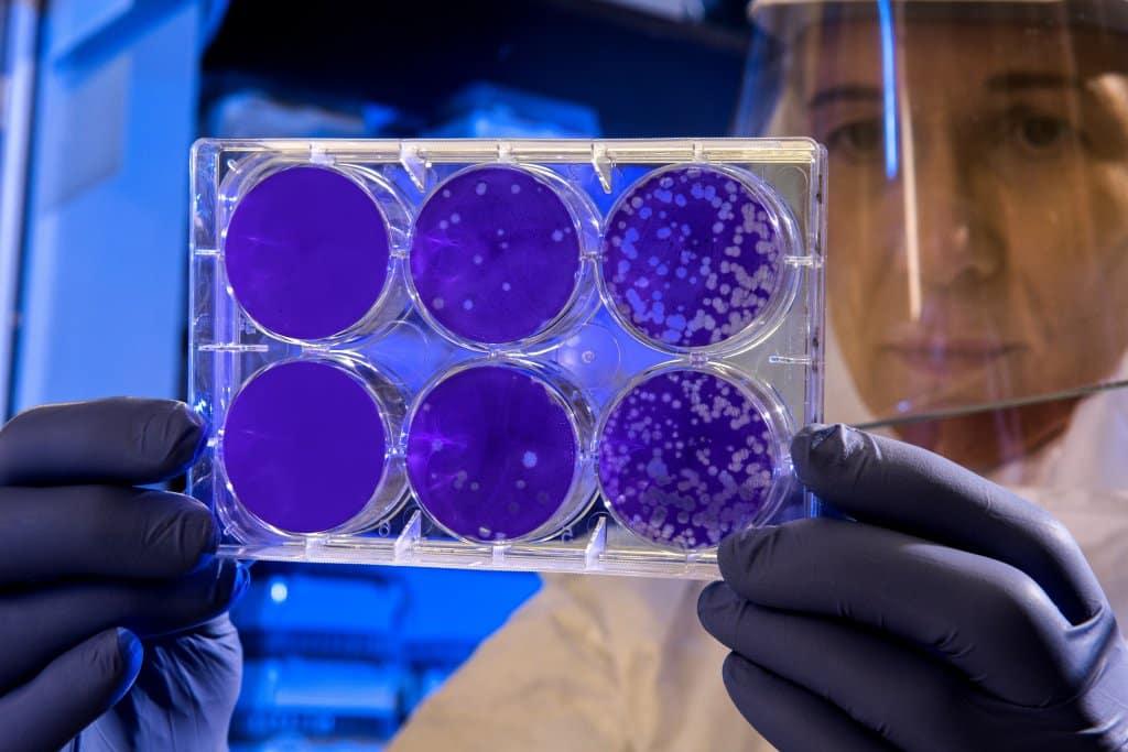 Como se prevenir do novo coronavírus? - Estevam pelo Mundo