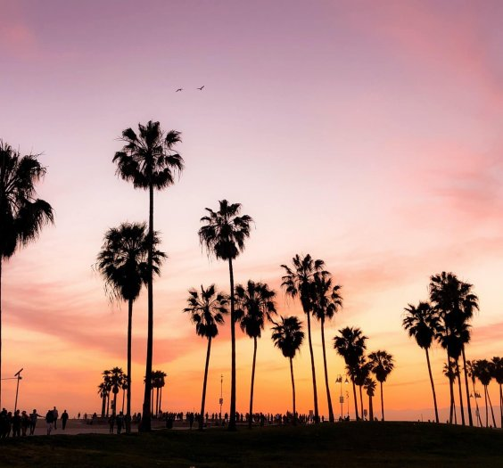 Califórnia - Photo by Viviana Rishe on Unsplash